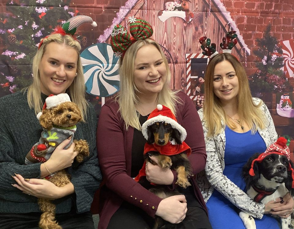 Travail Girls (furry and no furry!) prepare to receive toys for the More Radio Christmas Appeal